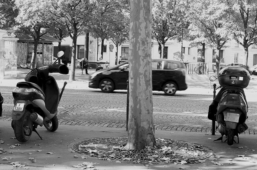 Paris_2_1