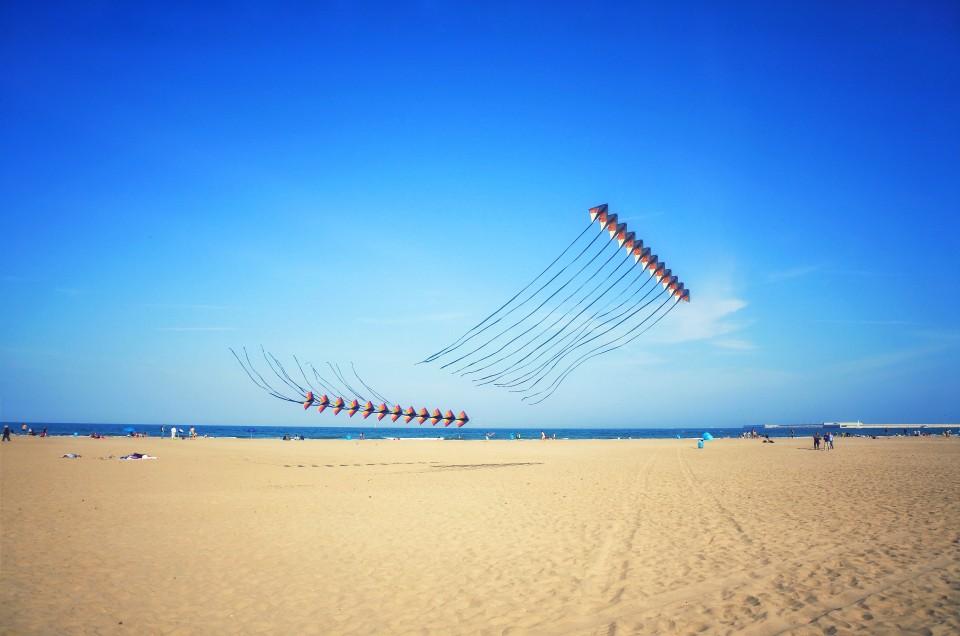Kites Valencia